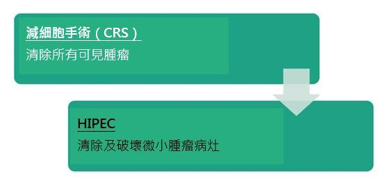 CRS_HIPEC-Chinese.JPG#asset:212179