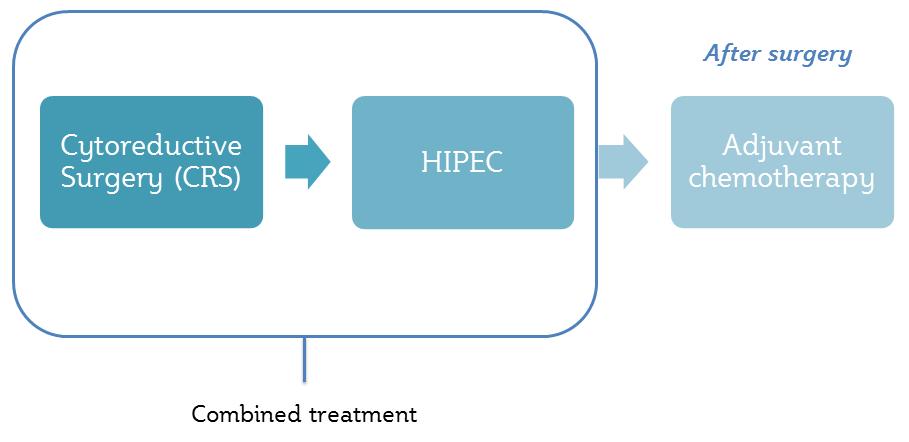 HIPEC-procedure_eng2.png#asset:60656