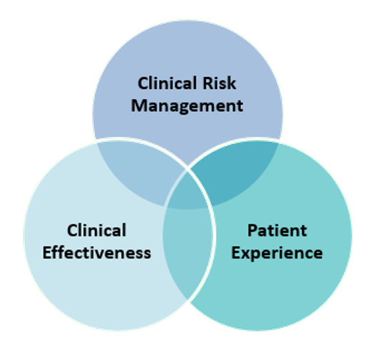 clinical-governance_white.png#asset:194898